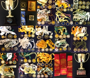 Medals & Trophies