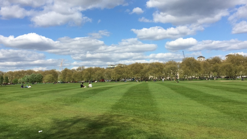 View across Hyde Park, with wide alternating stripes of light and dark green in the grass, and trees along the horizon hiding the buildings behind.