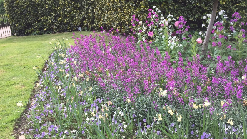 A large mixture of white, pink and purple flowers by a grass verge.