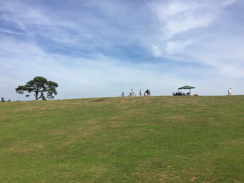A grass hill under a bright blue sky with light wispy clouds. At the top of the hill is a tree on the left, and people walking and cycling in the centre.
