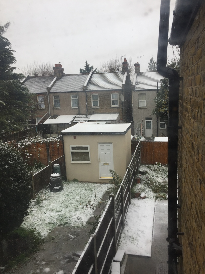 View outside my back bedroom window, with a dusting of snow over the back gardens and rooftops.
