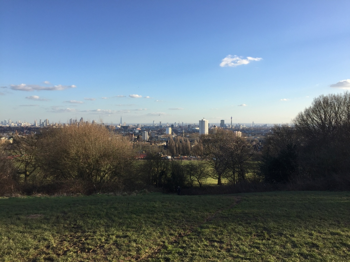 View of the London skyline from Parliament Hill in Hampstead Heath, beneath a blue sky with just a couple of wispy white clouds. In the far distance it's possible to make out the BT tower on the right, and the Shard just left of centre.
