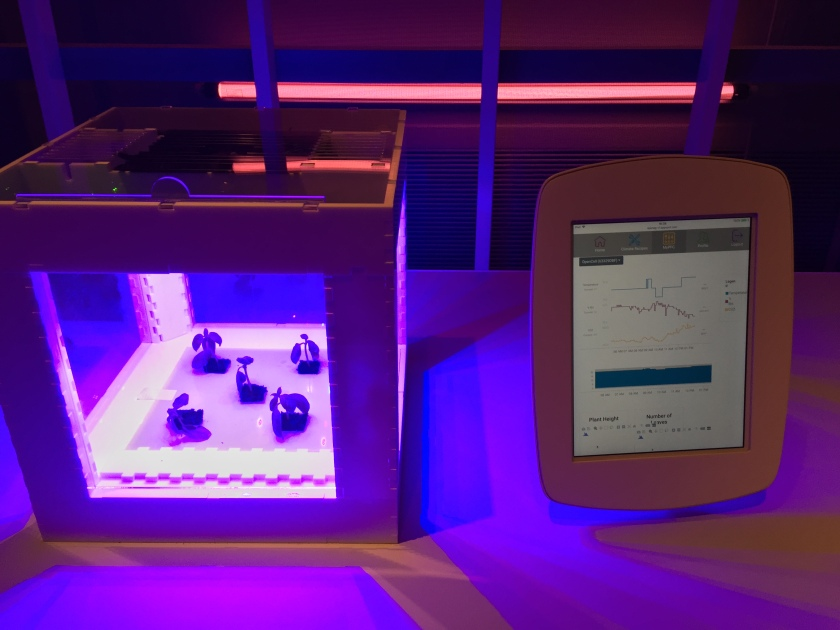 5 small plants under ultraviolet light in a large glass box, with a monitoring screen next to them showing measurements on line graphs.