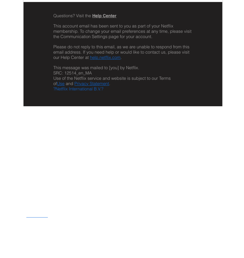 Screenshot of Netflix scam email footer