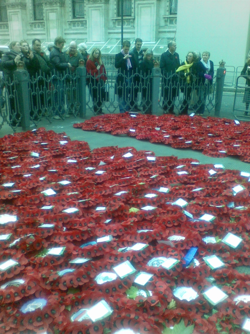 People looking over hundreds of poppy wreaths laid out on the ground.