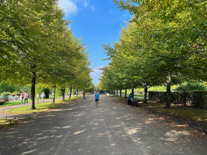 People walking down a long and wide path in Regent's Park, shaded from the sun by the trees lining both sides, all beneath the bright blue sky above.